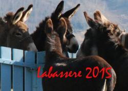 Labass 2015a sl