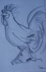 poules-copier-rc-rd.jpg